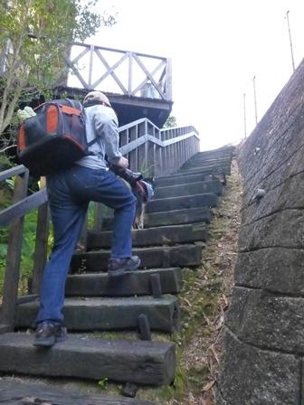 フィオーレ志摩朝のお散歩1