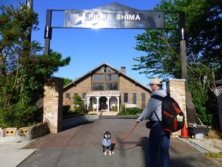 フィオーレ志摩朝のお散歩2