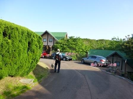 フィオーレ志摩朝のお散歩10