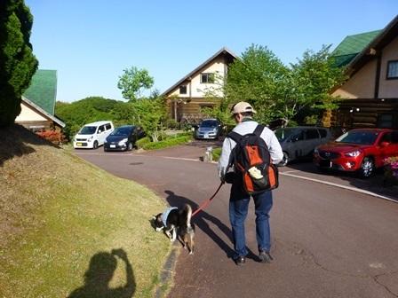 フィオーレ志摩朝のお散歩12