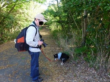 フィオーレ志摩朝のお散歩15