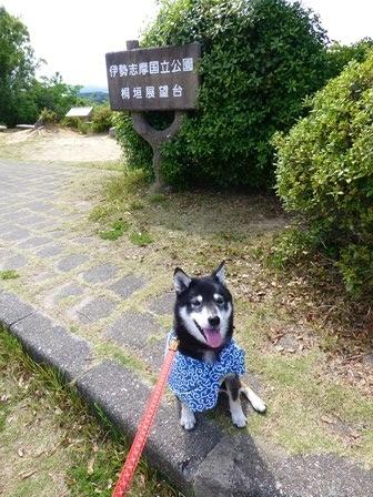 ともやま公園展望台1