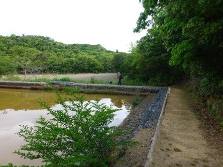 アクアヴィラ朝のお散歩 (4)