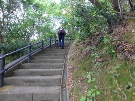アクアヴィラ朝のお散歩 (11)