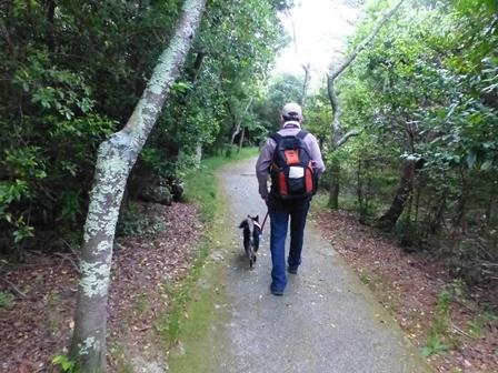 アクアヴィラ朝のお散歩 (12)