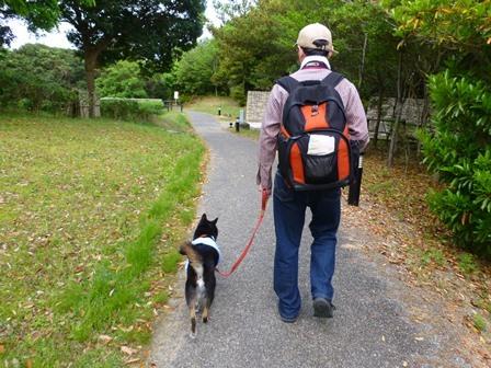アクアヴィラ朝のお散歩 (17)