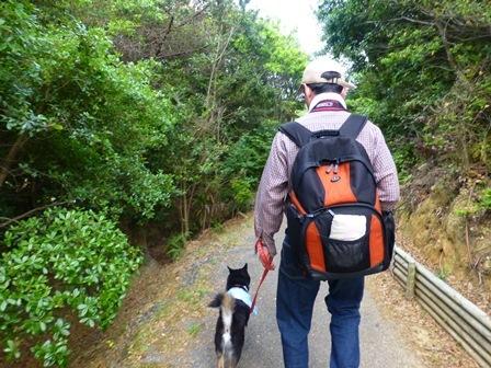 アクアヴィラ朝のお散歩 (20)