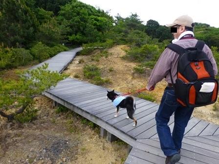 アクアヴィラ朝のお散歩 (29)