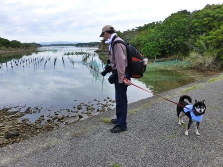 アクアヴィラ朝のお散歩 (32)