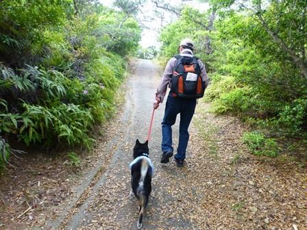 アクアヴィラ朝のお散歩 (41)
