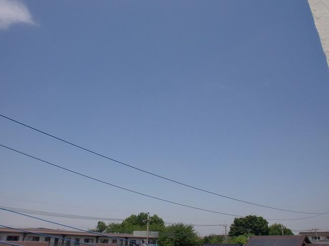 CIMG5880.jpg