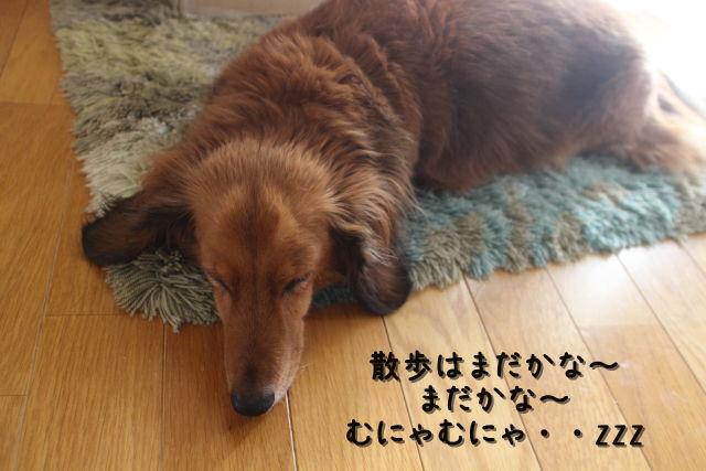 kako-YURi0oe7WVCs33Hu.jpg