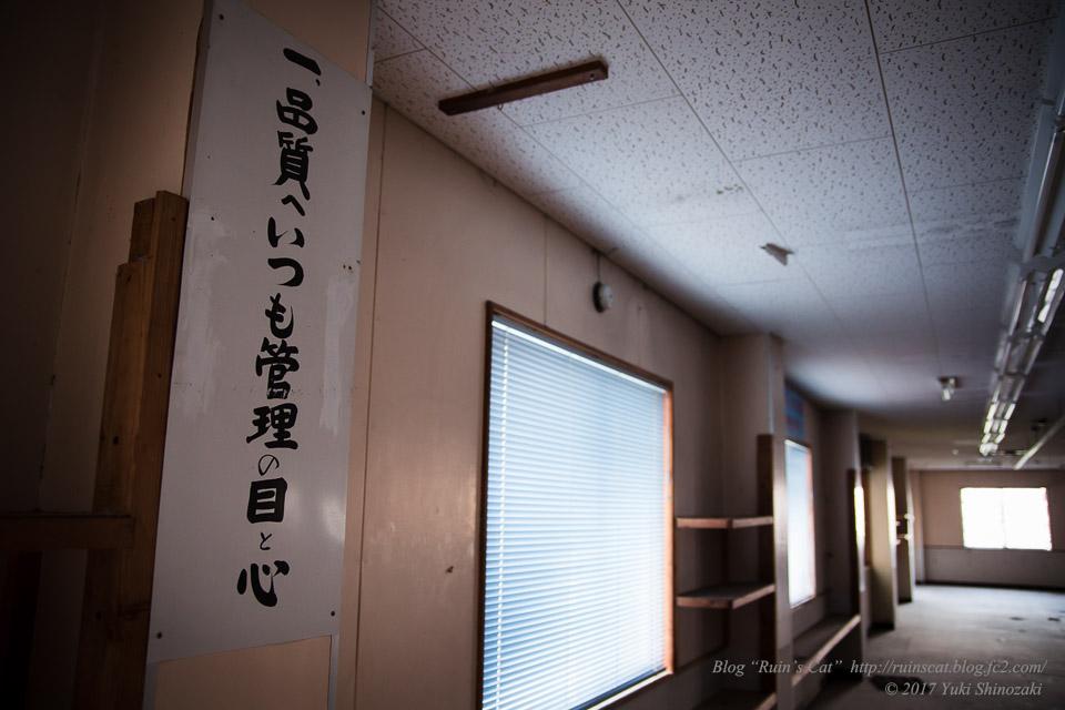 【廃墟】指宿ソーイング_標語