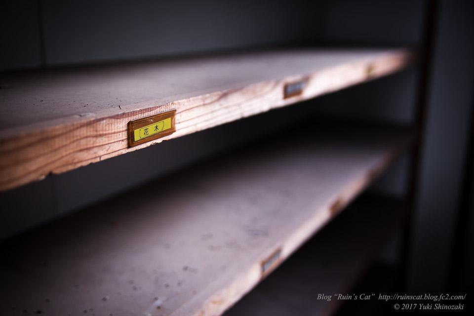 【廃墟】指宿ソーイング_従業員用の棚