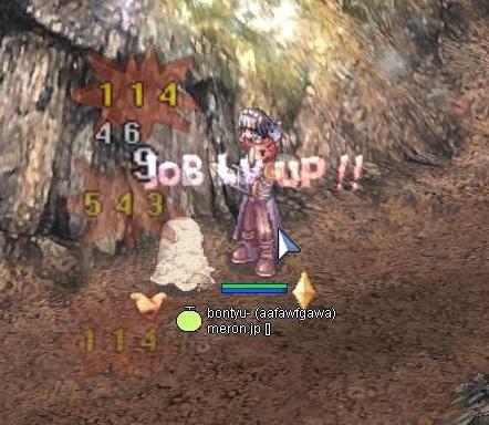 job50.jpg