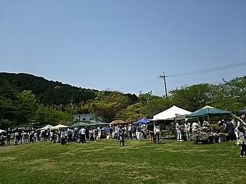 2017-04-30b.jpg