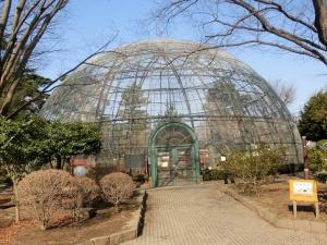 華蔵寺公園16
