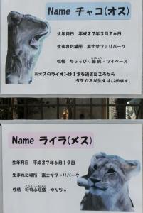 桐生動物8
