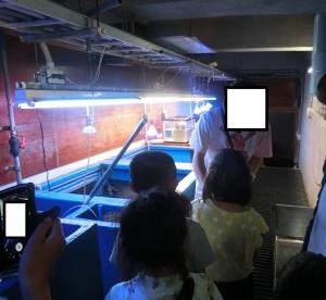 竹島バック12