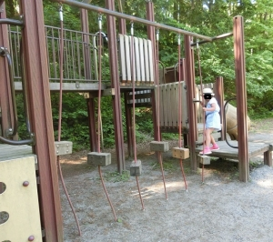 さかな公園4