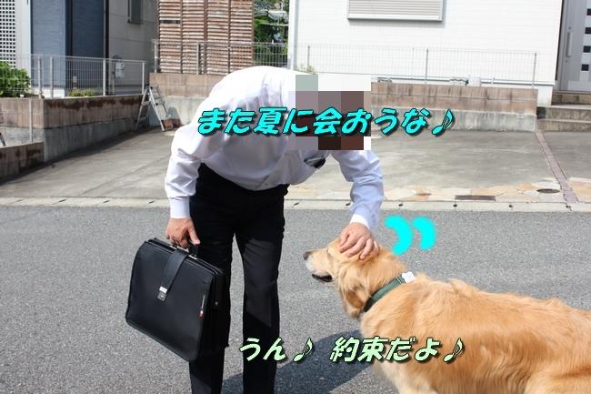201706191201017dc.jpg
