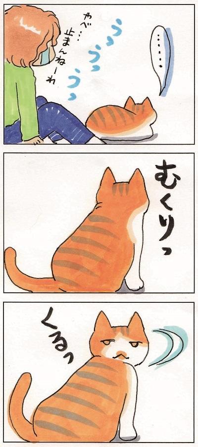 男前ガール玉緒 2-3