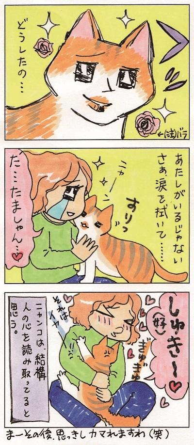 男前ガール玉緒 3-3