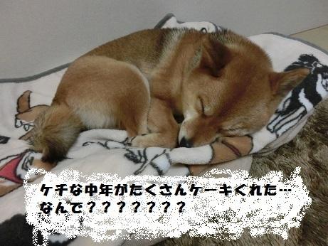 CIMG0413.jpg