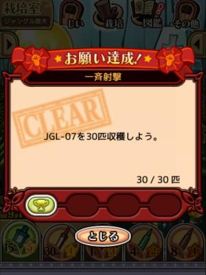 2017ジャングルの原木_061