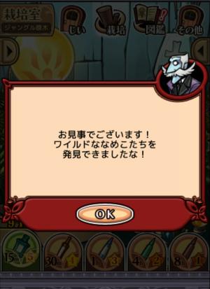 2017ジャングルの原木_064