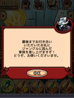 2017ジャングルの原木_072