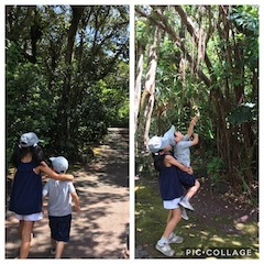 植物公園散策