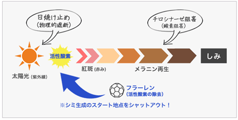 フラーレン200%!最強オールインワン【ビューティーモール APPS+E(TPNa)BMナノクリームF】リニューアル!