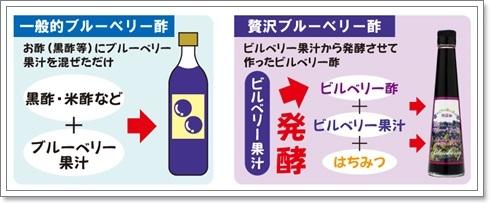 100%無添加!血のめぐりを整える、美容・健康にいい【贅沢ブルーベリー酢】約40回分が半額、1980円!