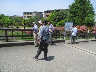 ホタル橋(中瀬橋)と花田橋で現地視察も