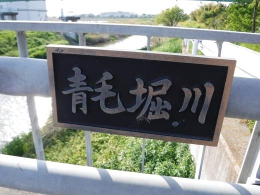 青毛堀川 (5)