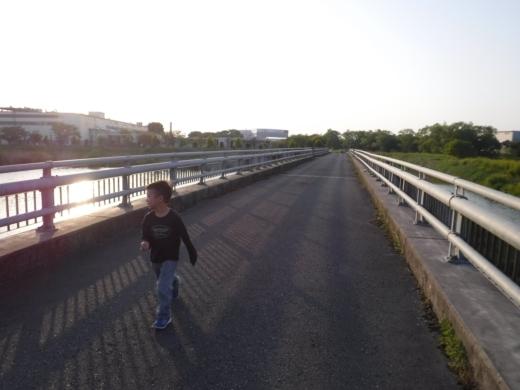 青毛堀川 (35)