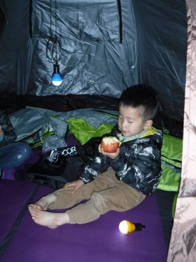 漁港でキャンプ (15)