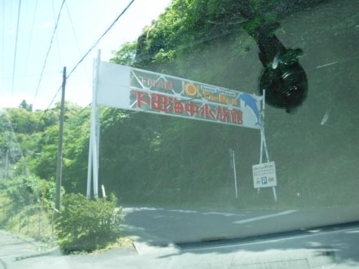 下田海中水族館 (1)