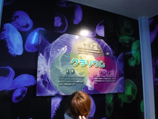 下田海中水族館 (26)