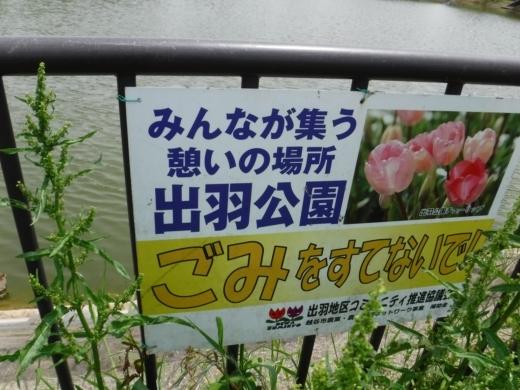 出羽公園 (5)