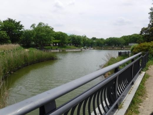 出羽公園 (6)