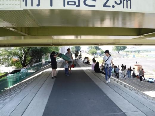 多摩川登戸釣り (8)