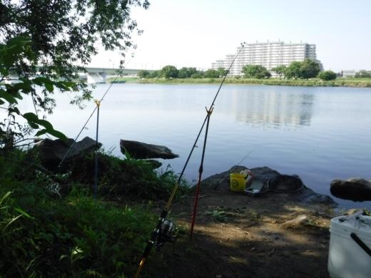 多摩川登戸釣り (21)