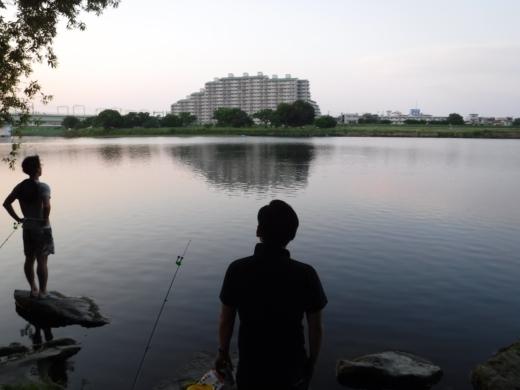 多摩川登戸釣り (24)