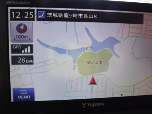 水生昆虫探し (29)