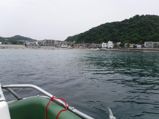 葉山の釣り (22)