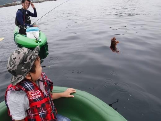 葉山の釣り (33)