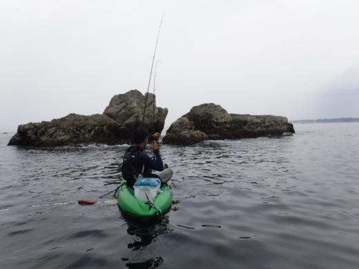 葉山の釣り (48)