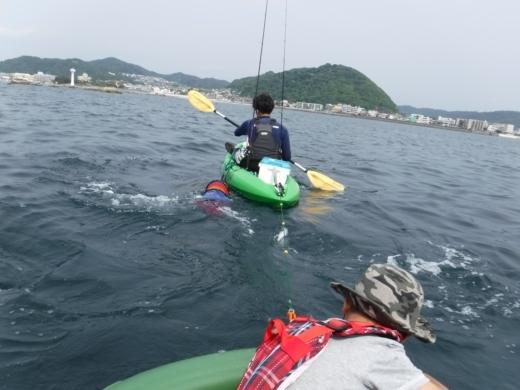 葉山の釣り (57)